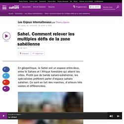 Sahel. Comment relever les multiples défis de la zone sahélienne