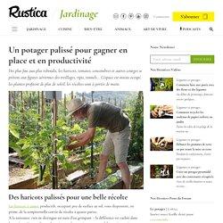 Comment palisser les légumes pour gagner de la place au potager