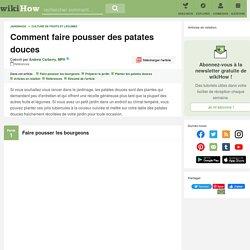 Comment faire pousser des patates douces (avec images)