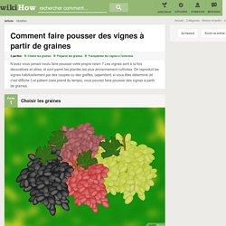 Comment faire pousser des vignes à partir de graines