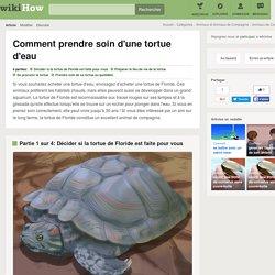 Comment prendre soin d'une tortue d'eau: 19 étapes