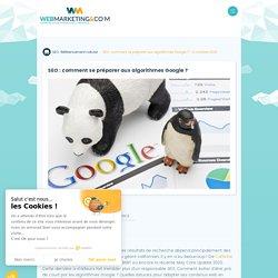 ▷ SEO : comment se préparer aux algorithmes Google ?