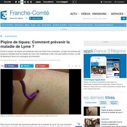 Piqûre de tiques: Comment prévenir la maladie de Lyme ? - France 3 Franche-Comté