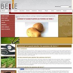Comment et quand planter les pommes de terre ?