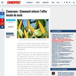 Comment relever l'offre locale de maïs - CAMERPOST