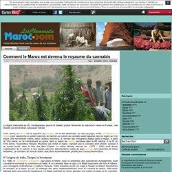 Comment le Maroc est devenu le royaume du cannabis