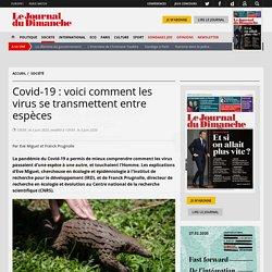 LE JDD 03/06/20 Covid-19 : voici comment les virus se transmettent entre espèces