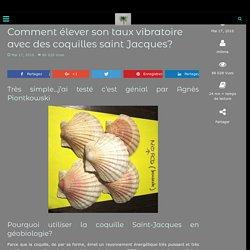 Comment élever son taux vibratoire avec des coquilles saint Jacques?