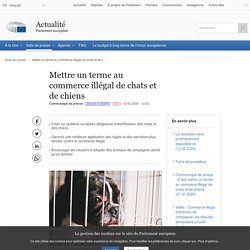 PARLEMENT EUROPEEN 12/02/20 Mettre un terme au commerce illégal de chats et de chiens