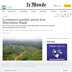 Le commerce mondial, moteur de la déforestation illégale