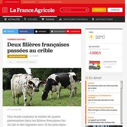 Commerce équitable : Deux filières françaises passées au crible
