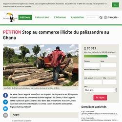 Stop au commerce illicite du palissandre au Ghana