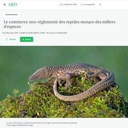 Le commerce non-réglementé des reptiles menace des milliers d'espèces Par GEO avec AFP - Publié le 29/09/2020 à 17h00 - Mis à jour le 30/09/2020