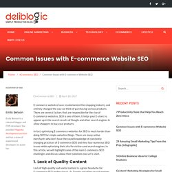 Common Issues with E-commerce Website SEO - Deliblogic