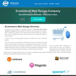 E-commerce Web Design Company in Sydney - Webzesty Ecommerce Web Design