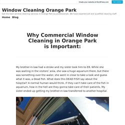 Why Commercial Window Cleaning in Orange Park is Important: