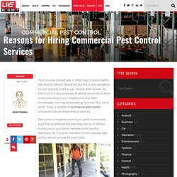 Hire a Commercial Pest Control Services Company