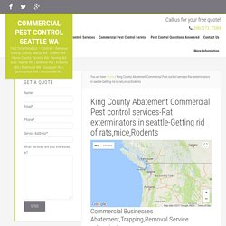 King County Abatement Commercial Pest control services-Rat exterminators in seattle-Getting rid of rats,mice,Rodents