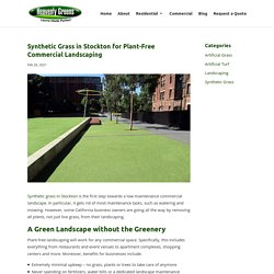 Plant-Free Commercial Landscape with Synthetic Grass in Stockton