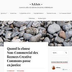 Quand la clause Non-Commercial des licences Creative Commons passe en justice – – S.I.Lex –