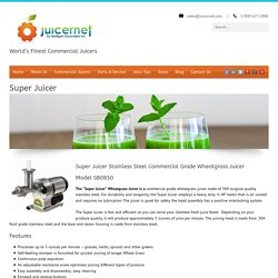 Stainless Steel Commercial Grade Wheatgrass Juicer- Jupiter Fl