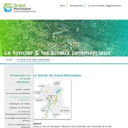 Grand Montauban – Communauté d'Agglomération : 2ème bassin d'emplois de la Région Midi-Pyrénées