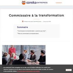 Commissaire à la transformation : rôle et missions