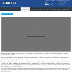 Commissaires aux comptes et experts comptables à Lyon
