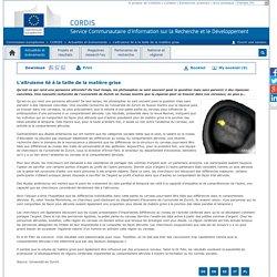 Commission européenne : CORDIS : Actualités et évènements : L'altruisme lié à la taille de la matière grise