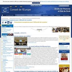 CEPEJ : Commission européenne pour l'efficacité de la justice