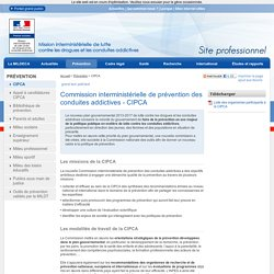 Commission interministérielle de prévention des conduites addictives - CIPCA