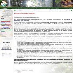 Chauves-souris : espèces protégées ... - CPEPESC - Commission de Protection des Eaux