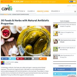 Common Foods & Herbs With Antibiotic Properties