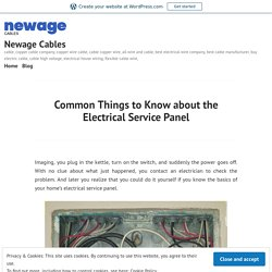 Common Things to Know about the Electrical Service Panel – Newage Cables