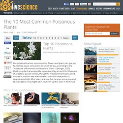 Ten Most Common Poisonous Plants