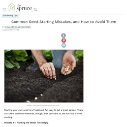 5 Common Seed-Starting Mistakes to Avoid in Your Garden