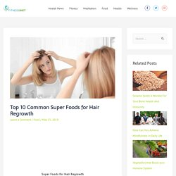 Top 10 Common Super Foods for Hair Regrowth - Fitness Diet