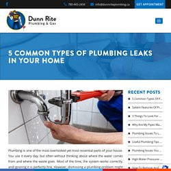 5 Common Types Of Plumbing Leaks In Your Home