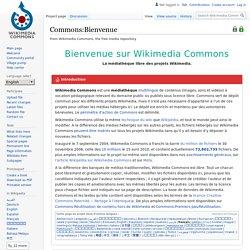 Commons:Bienvenue