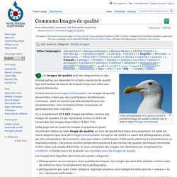 Commons:Images de qualité