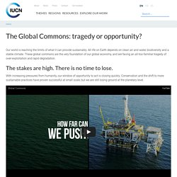 The Global Commons: tragedy or opportunity?