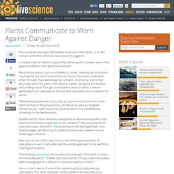 Plants Communicate to Warn Against Danger