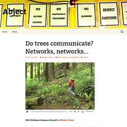 Do trees communicate? Networks, networks…