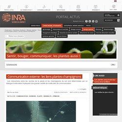Communication externe : les liens plantes-champignons