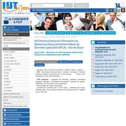 LP Communication et Information en Ressources Documentaires et Bases de Données (spécialité APICA) - Site de Dijon - IUT Dijon/Auxerre