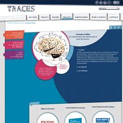 Théories et Réflexions sur l'Apprendre, la Communication et l'Éducation Scientifiques > Cerveaux d'Ados