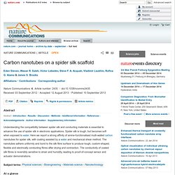 Carbon nanotubes on a spider silk scaffold : Nature Communications