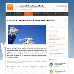 Licence Pro Communications Numériques et E-Activités