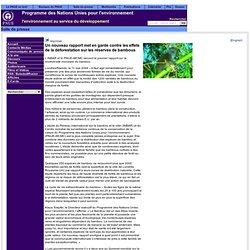 Communiqués de press - Mai 2004 - Un nouveau rapport met en garde contre les effets de la déforestation sur les réserves de bambous