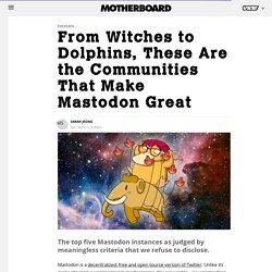 From Witches to Dolphins, These Are the Communities That Make Mastodon Great - Motherboard